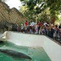 Que faire à Rome pour les vacances de la Toussaint avec les enfants ?